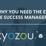 why you need a customer success manager for online sales